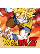 20 Serviettes en papier Dragon Ball Z™ 33 x 33 cm