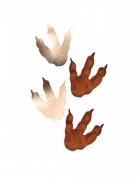 6 Empreintes de dinosaure marron et doré 15,5 x 13,5 cm