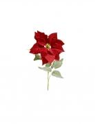 Tige de poinsettia en velours rouge 71 x 24 cm