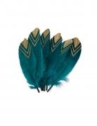 6 Plumes éthnique bleu paon et or 18-20 cm