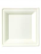 10 Assiettes carrées fibre de canne 26 x 26 cm