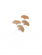 4 Feuilles de ginkgo paillettes or 5,8 x 7 cm