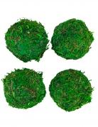 4 Boules de mousse vertes 6 cm