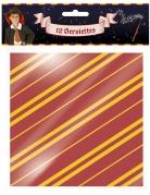 12 Serviettes en papier sorcier 33 x 33 cm