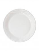 10 Assiettes en carton home compostable blanches 23 cm