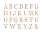 48 Lettres adhésives rose gold 13,5 cm